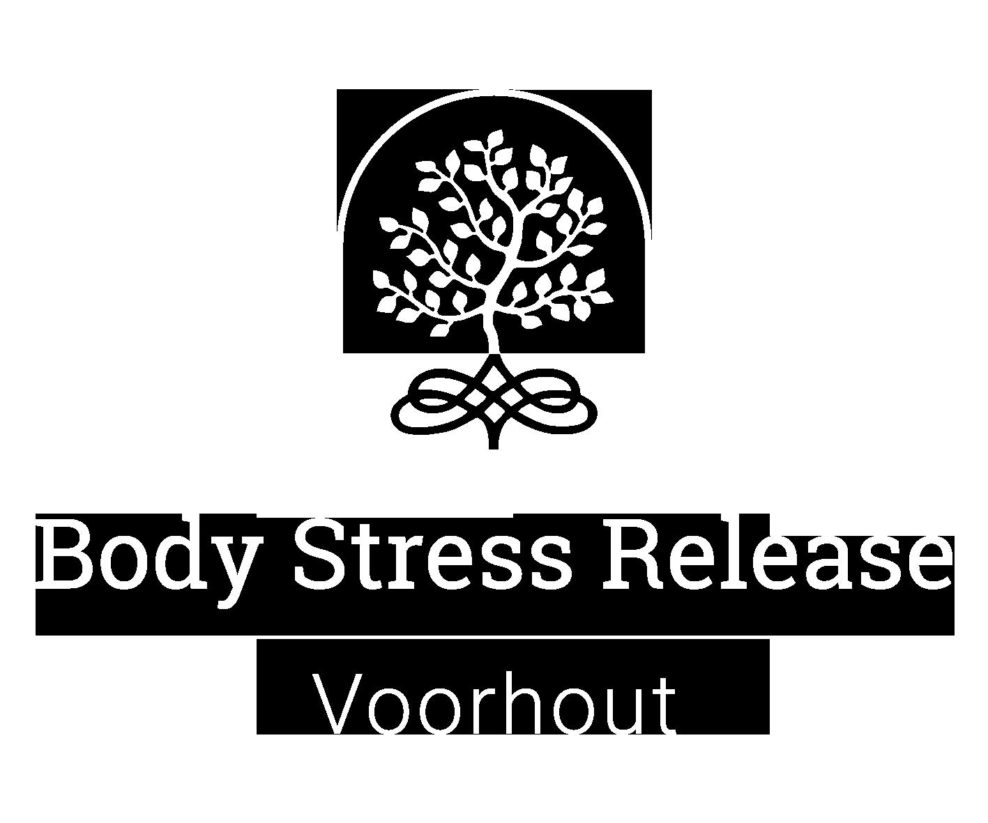 bsr-voorhout.nl logo